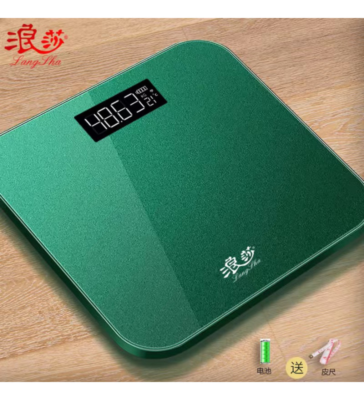 Rechargeable electronic weight scale